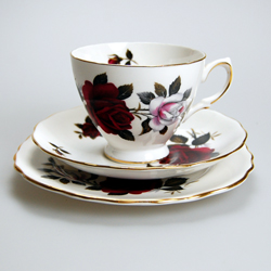 Colclough Bone China Amoretta Tea Cup Saucer Amp Plate Bone